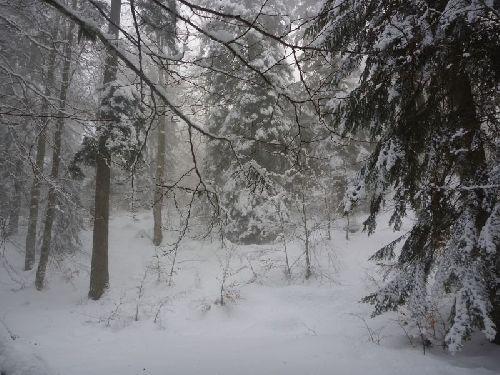 Pas de problème, la neige est au rendez-vous à nouveau !