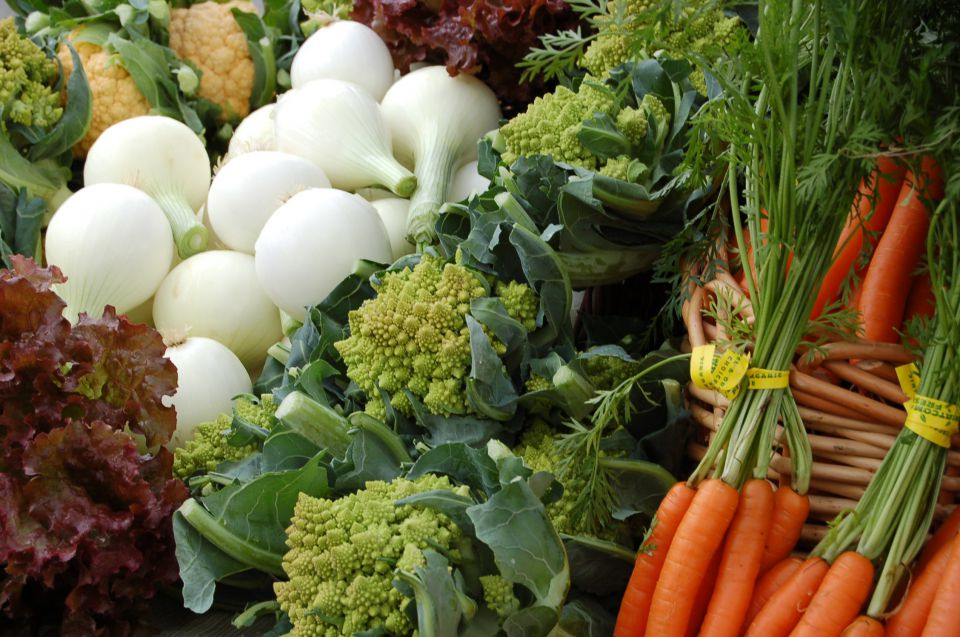 Nos légumes bio près de Marmande