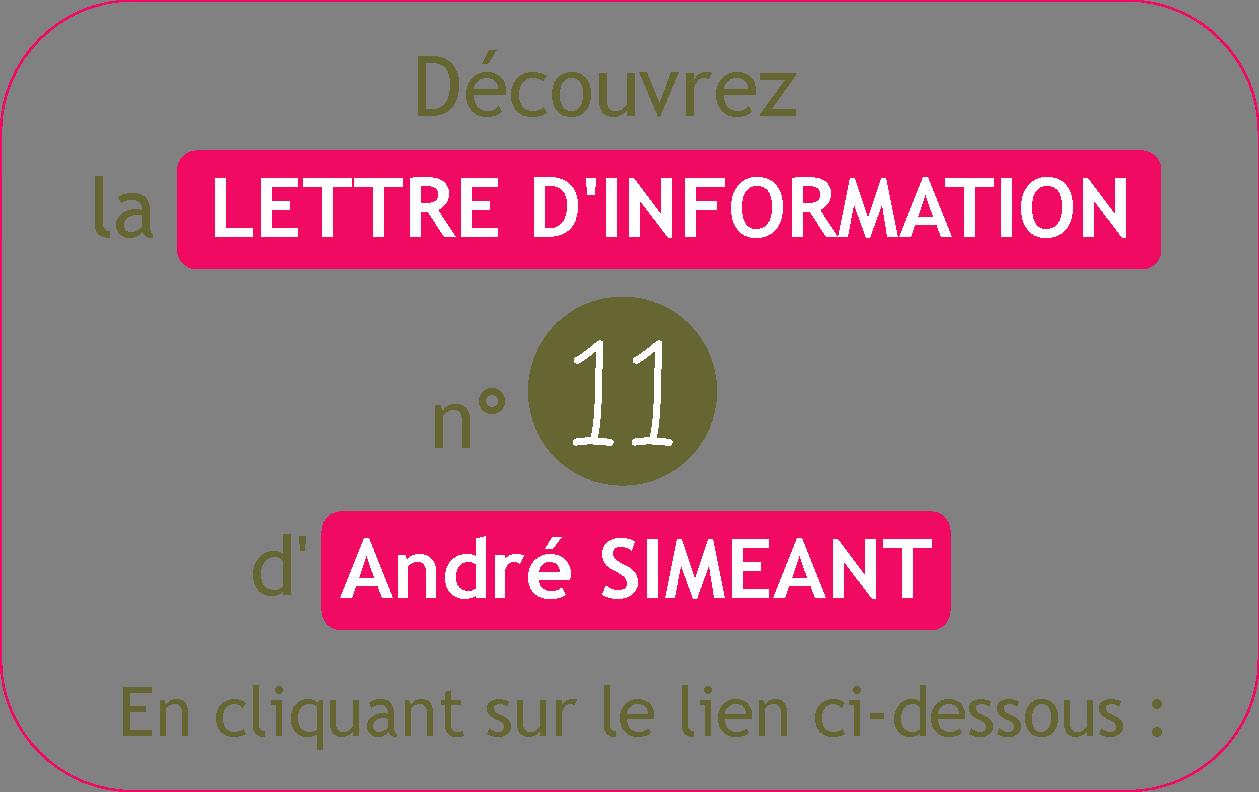 IM - Lettre d'information - Page accueil blog.png