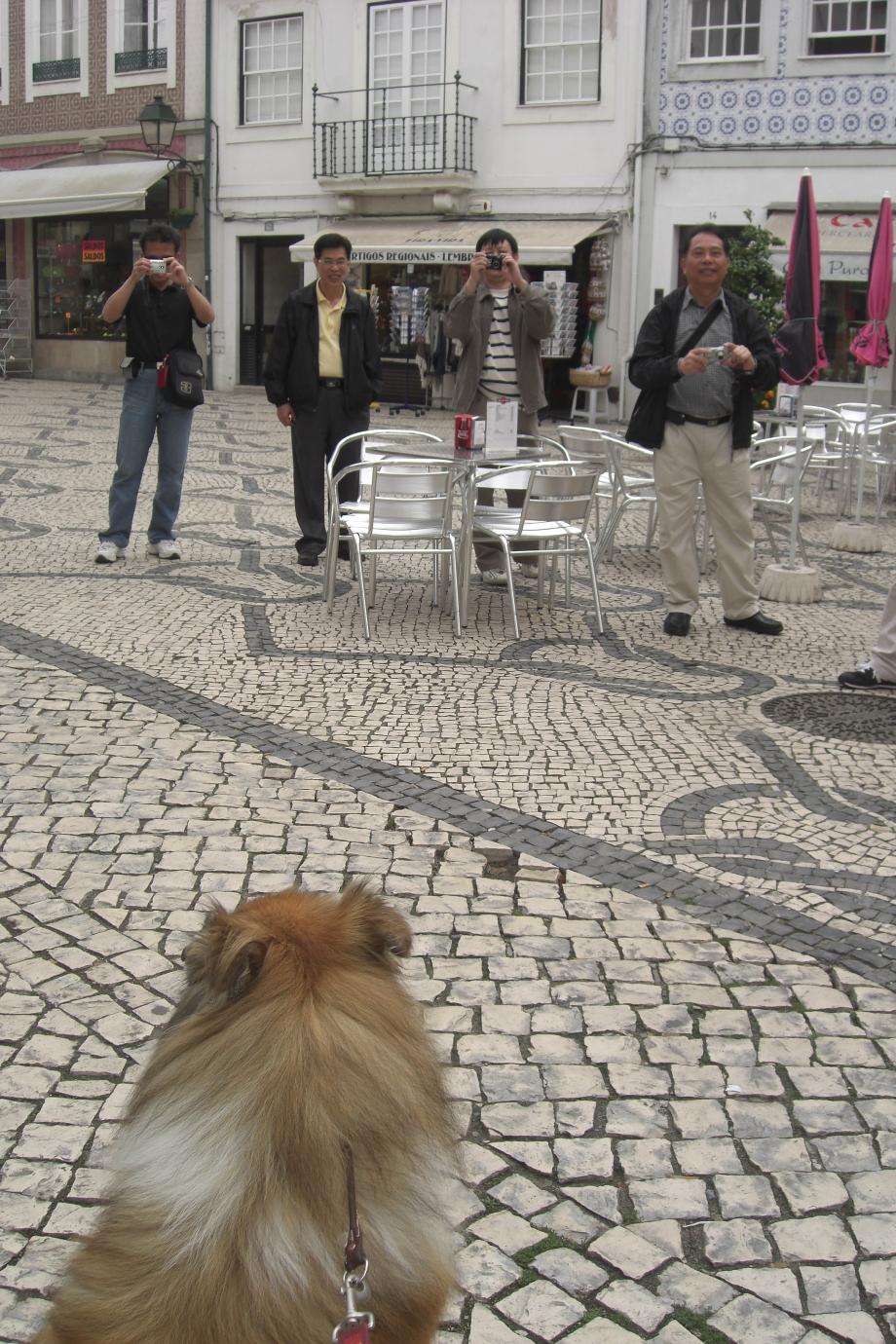 Portugal 2008 052.JPG