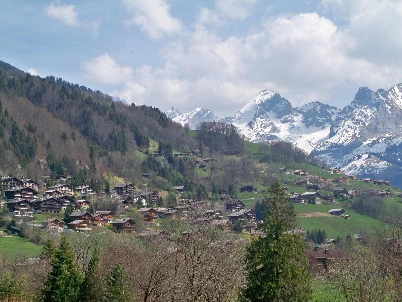 Hte Savoie 269 (Copier).JPG