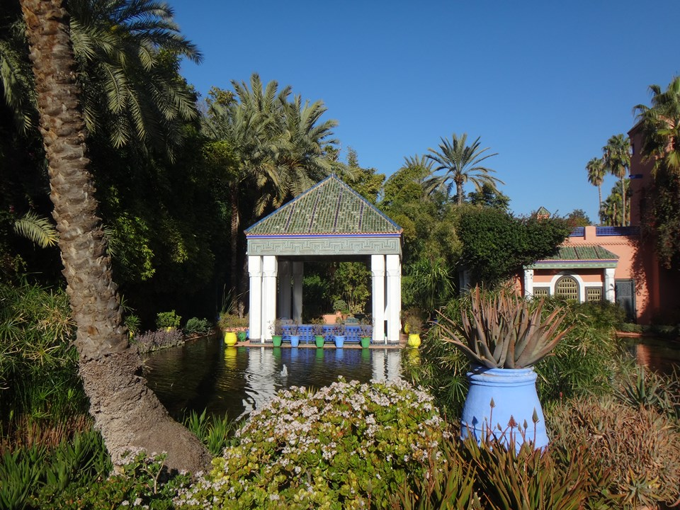 Maroc Daniel 2019 049 (Copier).JPG