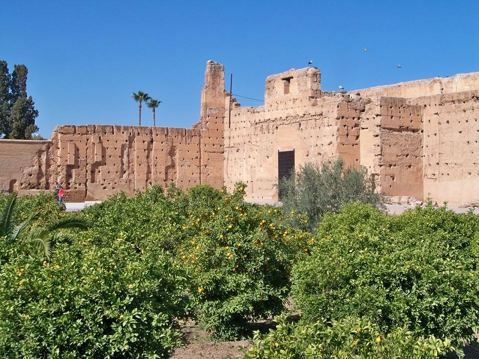 Maroc 2019 111 (Copier).JPG
