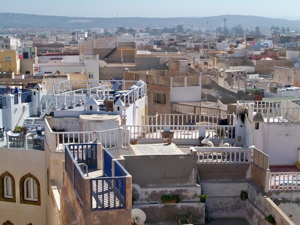 Maroc 2019 288 (Copier).JPG