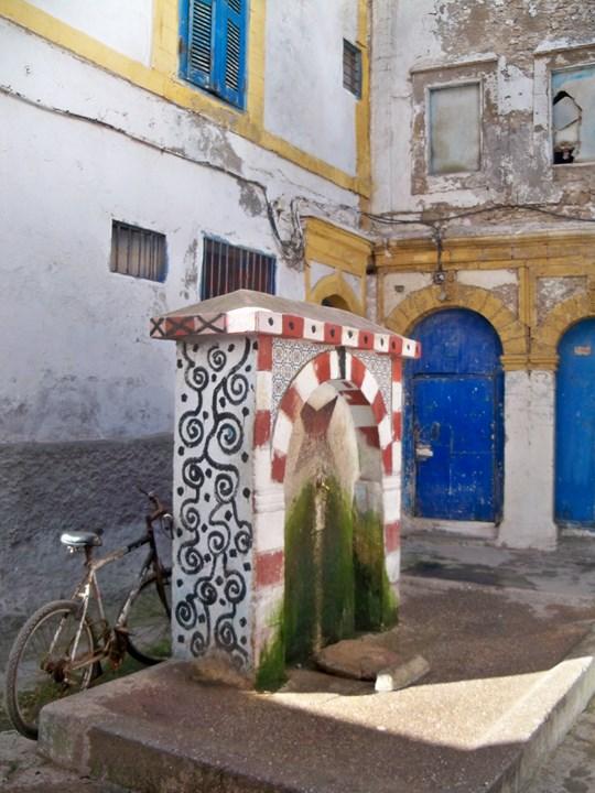 Maroc 2019 374 (Copier).JPG