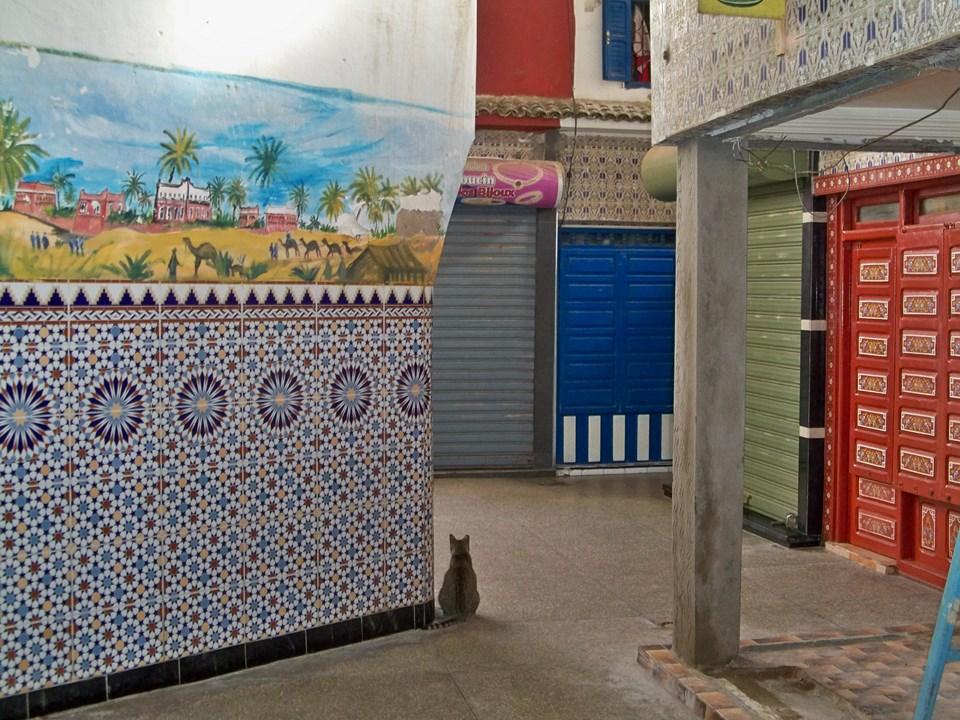 Maroc 2019 381 (Copier).JPG