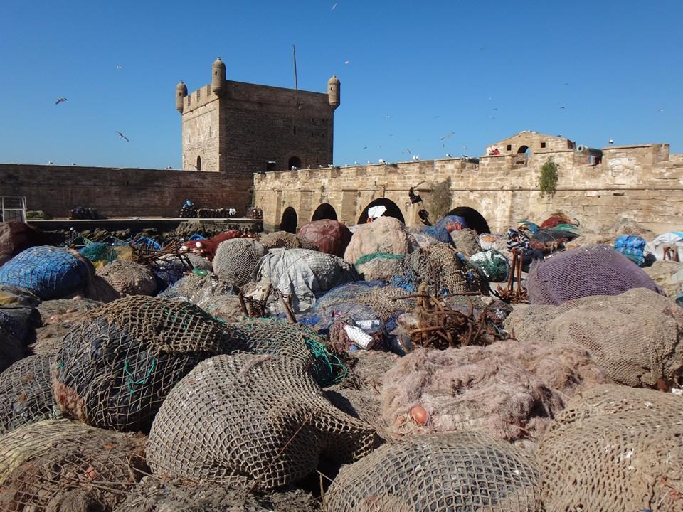 Maroc Daniel 2019 161 (Copier).JPG