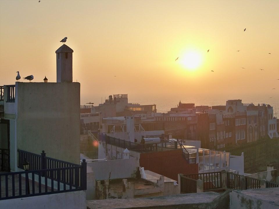Maroc 2019 340 (Copier).JPG