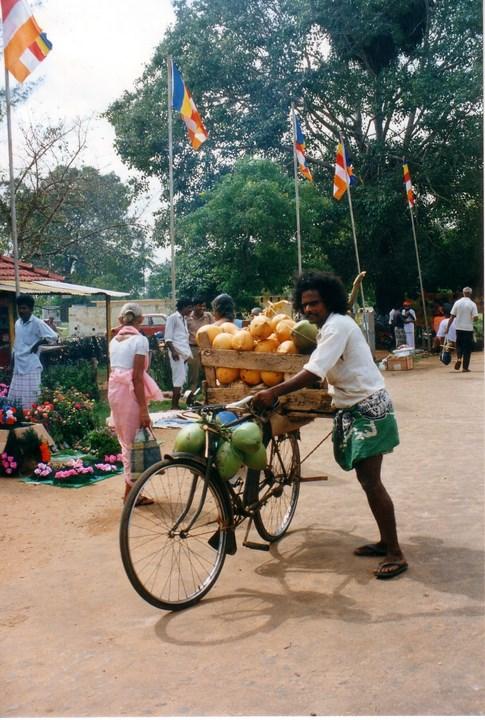 Anuradhapura (Copier).jpg