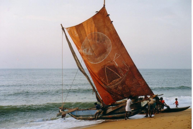 Retour de pêche à NEGOMBO (Copier).jpg