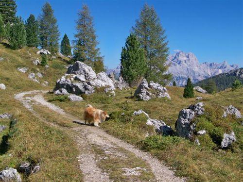 Les Dolomites. Artimage_263507_3700507_201110143102231