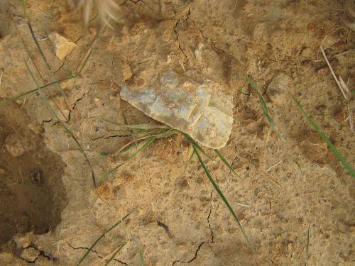 Biface du site 168  , découvert sur le terrain