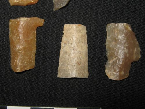 Fragments de pointes a crans Solutréenne du site 150