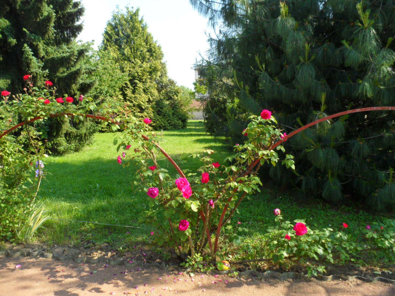 Vue jardin le jardin interieur villefranche - Jardin interieur villefranche ...