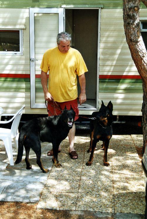 François avec Falun et Nouba