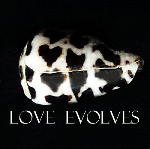 Love Evolves