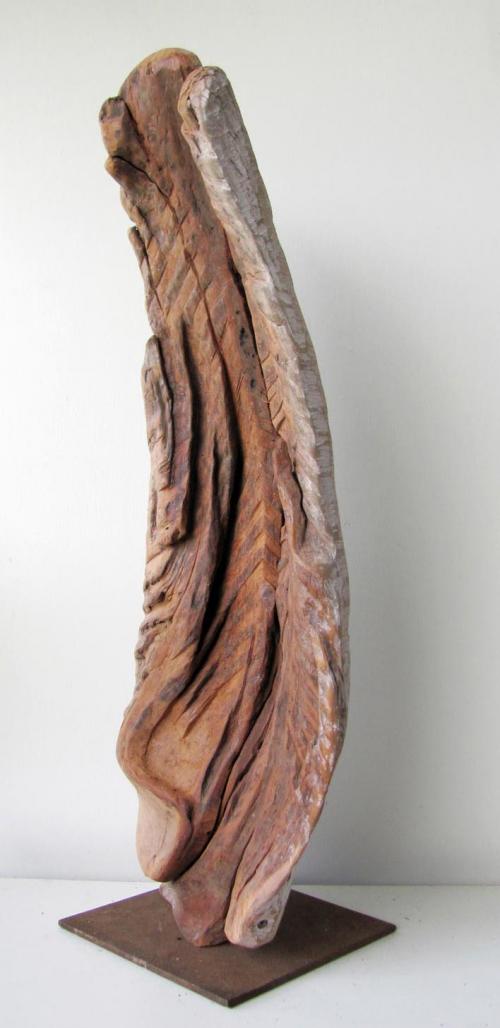 Fossile-3.jpg