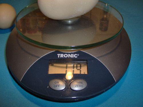 30/11/2009... le nouveau record à 119g