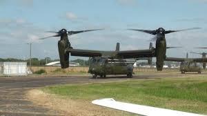osprey.jpg