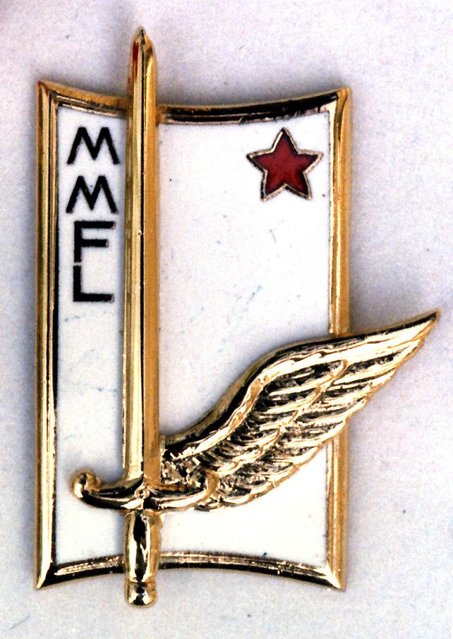 Insigne (photo).jpg