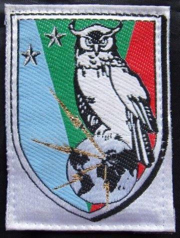 insigne brigade rensigenemnt.JPG