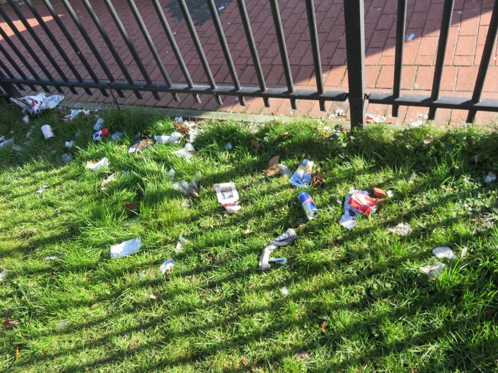 Pour un jardin plus propre le blog de singulier pluriel for Jardin singulier 2015