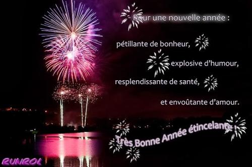 souhaiter-une-bonne-et-heureuse-annee-2014.jpg