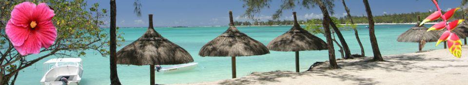 Si  l'île Maurice n'est pas le paradis, elle y ressemble