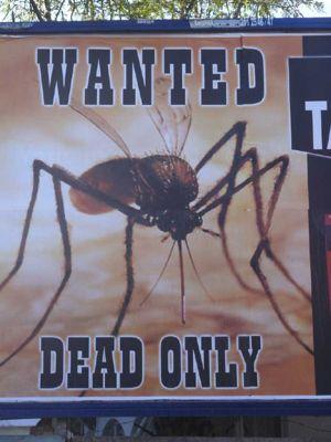 Wanted -  Recherché...