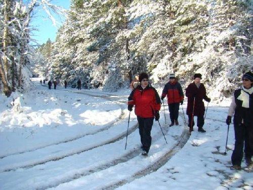 excursion hivernal
