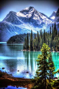 Quelle belle nature prenons-en soin.