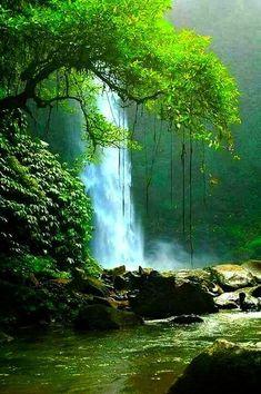 Pas beau la nature ?