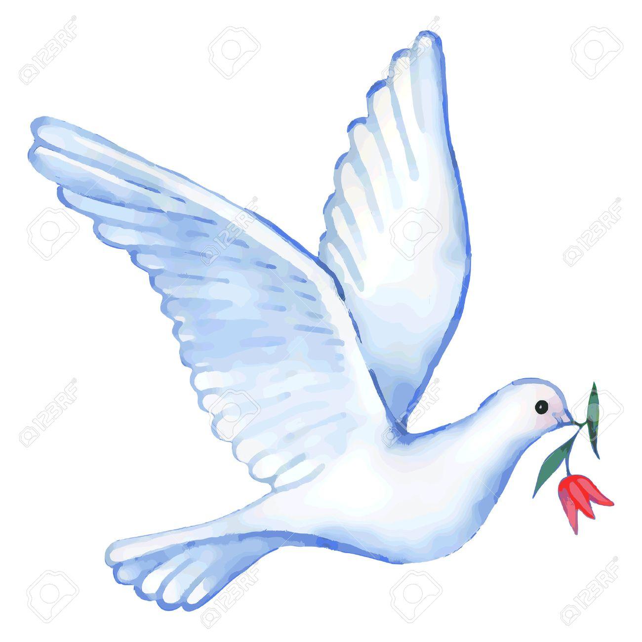 Une fleur pour vous tous et toutes amenée par une colombe.