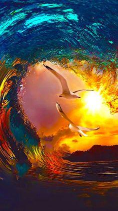 Oiseaux sur fond de coucher de soleil.