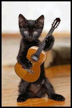 Un petit air de guitare pour enchanter nos coeur.