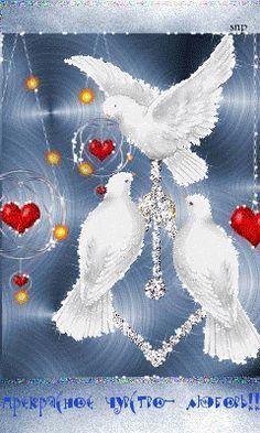 Paix, Harmonie et bonheur