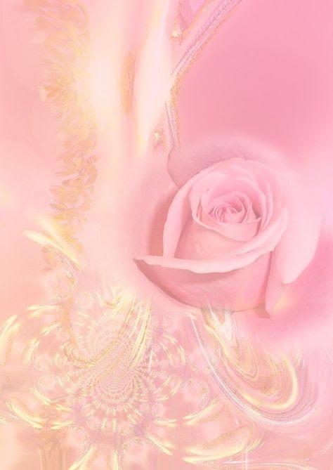 Une rose pour vous.
