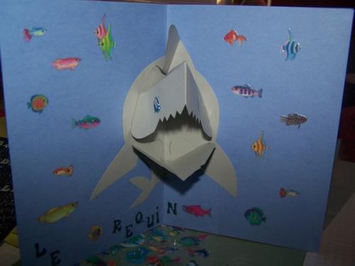 carte requin pop-up 2.jpg