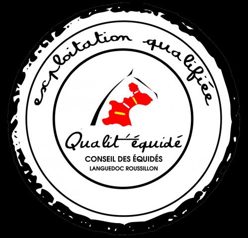 Logo QE-2.PNG