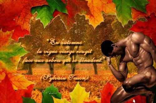 citation automne.jpg