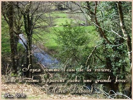 Créa citation soyez comme l'eau de la rivière.jpg