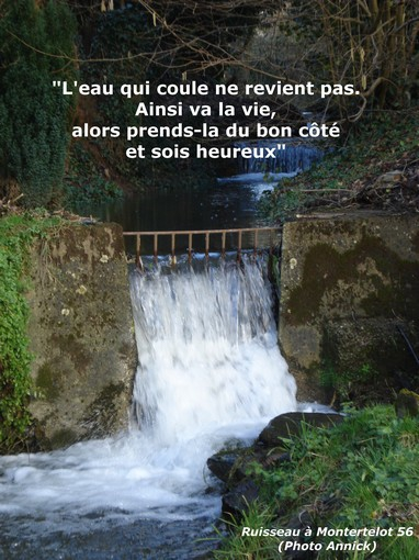 Citation l'eau.jpg