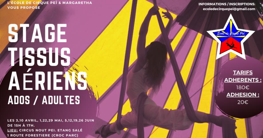 Stage Perfectionnement Trapèze Tissus Aériens. Les 29 Octobre 5 12 19 26 Novembre 3 décembre 2020. Tarif _ 130€ + 20€ Adhésion-5.png