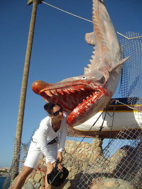 Hurghada 2009 Les dents de la mer