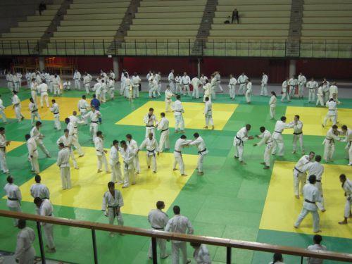 Les juniors et les cadets en randoris dans le dojo principal.