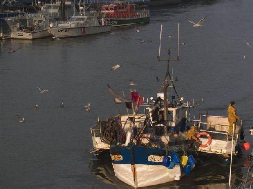 arrivée d\'un bateau de pêche (photo de gégé)