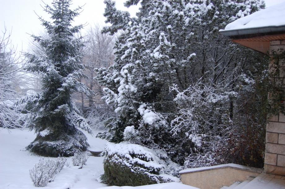 03-12-2008 08-13-38_0004.JPG