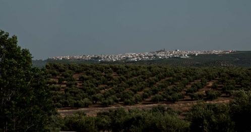 Panorama Porcuna.jpg