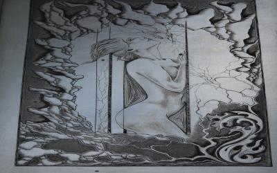 BRUNON Veronique  graveur,livre d artiste,art plas