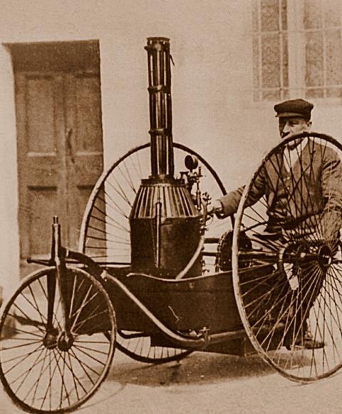 pecori 1891.png